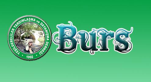 burs3