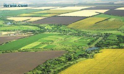 Çiftçilere Müjde! Yerli ve Hümik Asitli Gübre Üretiliyor!