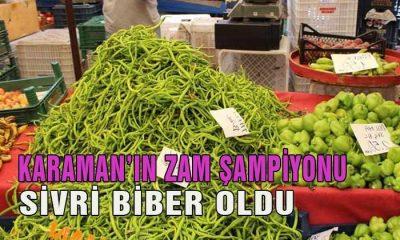 Karaman'da Hangi Ürünlerin Fiyatı Ne Kadar Arttı?