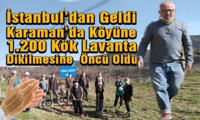 İstanbul'dan Geldi Köyüne 1.200 Kök Lavanta Dikilmesine  Öncü Oldu