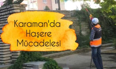 Karaman'da Haşere İle Mücadele