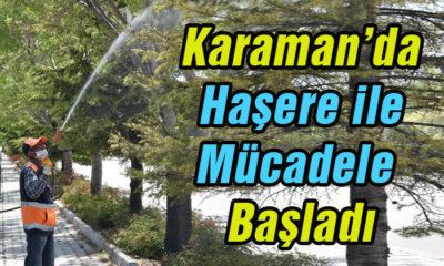 Karaman'da Haşere ile Mücadele Başladı