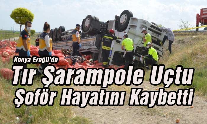 Tır Şarampole Uçtu! Şoför Hayatını Kaybetti