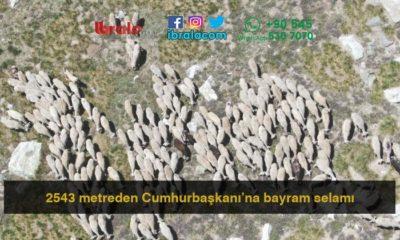 2543 metreden Cumhurbaşkanı'na bayram selamı