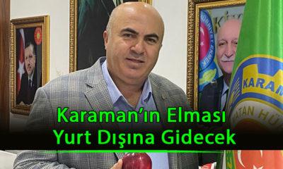 Karaman'ın Elması Yurt Dışına Gidecek