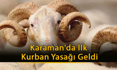 Karaman'da İlk Kurban Yasağı Geldi