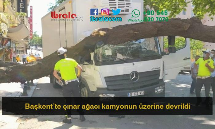 Başkent'te çınar ağacı kamyonun üzerine devrildi