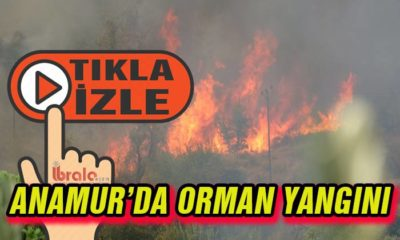 Anamur'da orman yangını! Gittikçe büyüyor!