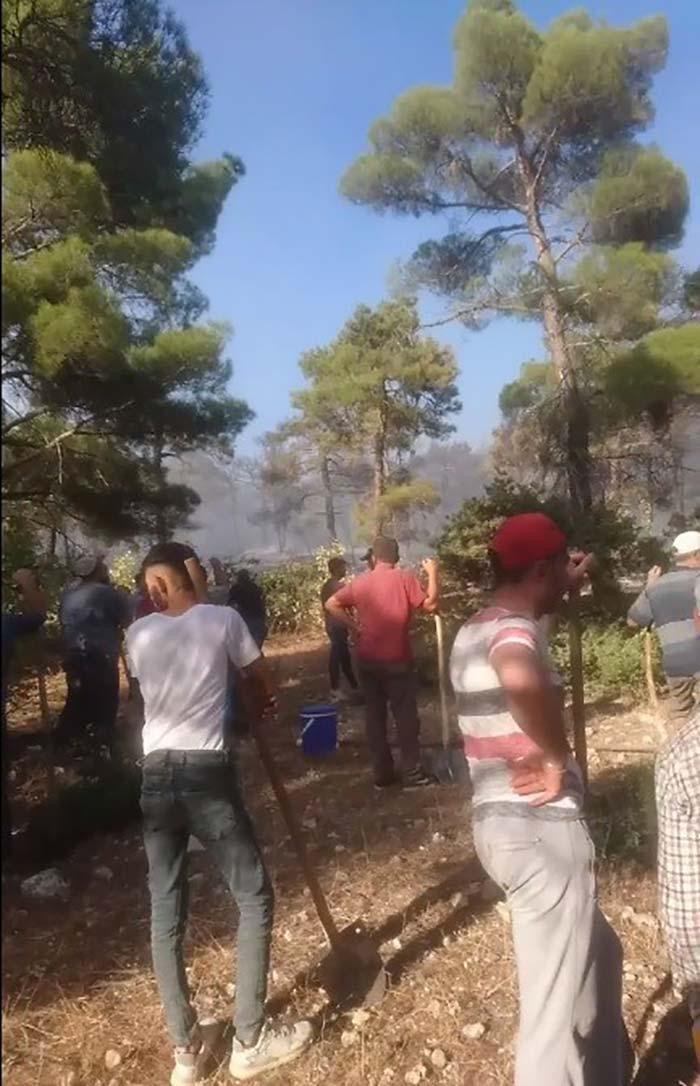 Karaman'da orman yangını