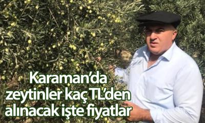 Karaman'da Zeytin Fiyatları Açıklandı İşte Fiyatlar
