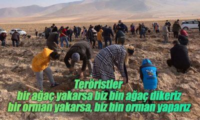 """Teröristler bir ağaç yakarsa biz bin ağaç dikeriz, bir orman yakarsa, biz bin orman yaparız"""""""