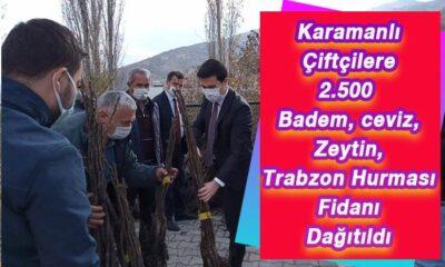 Karaman'da 2.500 fidan dağıtıldı