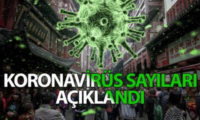 Koronavirüste Endişelendiren Rakamlar; 134 ÖLÜM