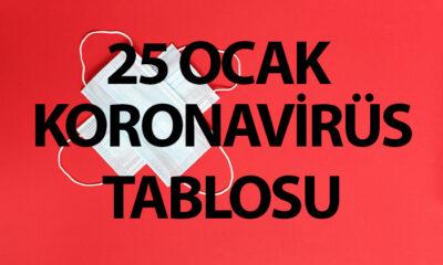Koronavirüs Durum Raporu, 137 ÖLÜM