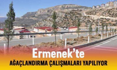 Ermenek'te ağaçlandırma çalışmaları yapılıyor