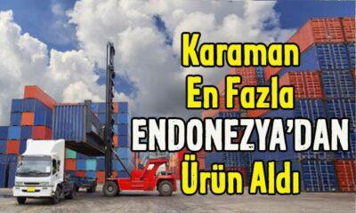 Karaman en fazla Endonezya'dan ürün aldı