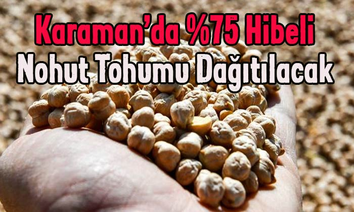 Karaman'da nohut tohumu dağıtılacak