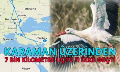 Karaman üzerinden 7 bin kilometre uçtu 11 ülke geçti