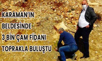 Karaman'ın beldesinde 3 bin çam fidanı toprakla buluştu