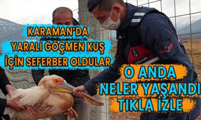 Karaman'da göçmen kuş için seferber oldular