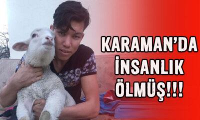 Karaman'da insanlık ölmüş diyeceksiniz!