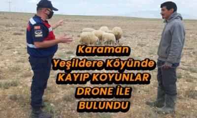 Yeşildere köyünde kayıp koyunlar drone ile bulundu