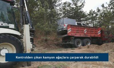 Kontrolden çıkan kamyon ağaçlara çarparak durabildi