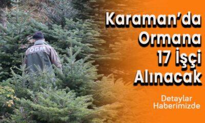 Karaman'da Ormana 17 işçi alınacak