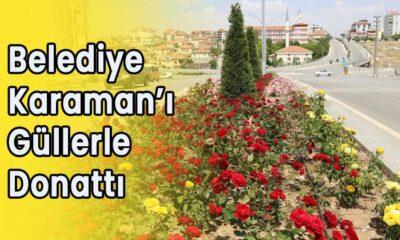 Belediye Karaman'ı güllerle donattı