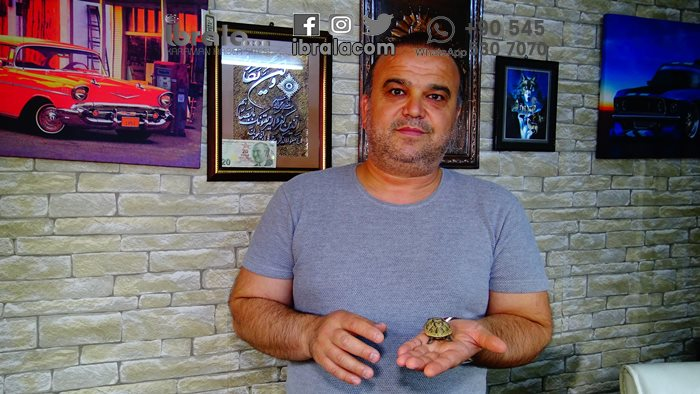 Karaman'da bulundu! Detaylar video haberde