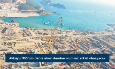 Akkuyu NGS'nin deniz ekosistemine olumsuz etkisi olmayacak