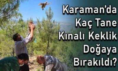 Karaman'da kaç tane kınalı keklik doğaya salındı?