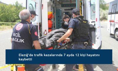 Elazığ'da trafik kazalarında 7 ayda 12 kişi hayatını kaybetti