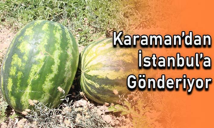 Karaman'dan İstanbul'a gönderiyor