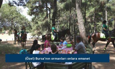 (Özel) Bursa'nın ormanları onlara emanet