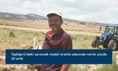 Taşköprü'deki sarımsak model üretim alanında verim yüzde 20 arttı