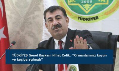 """TÜDKİYEB Genel Başkanı Nihat Çelik: """"Ormanlarımız koyun ve keçiye açılmalı"""""""