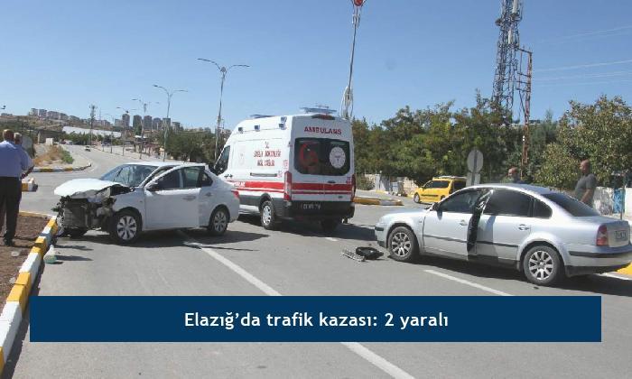 Elazığ'da trafik kazası: 2 yaralı