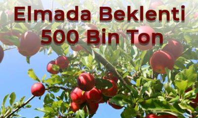 Elmada Beklenti 500 Bin Ton