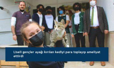 Liseli gençler ayağı kırılan kediyi para toplayıp ameliyat ettirdi