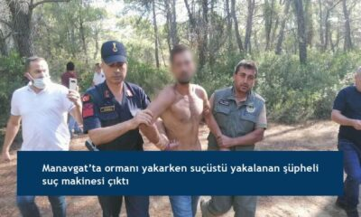 Manavgat'ta ormanı yakarken suçüstü yakalanan şüpheli suç makinesi çıktı