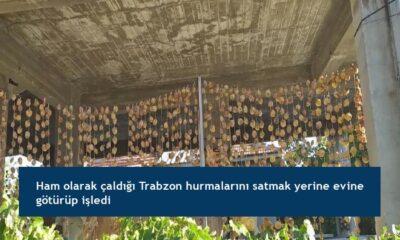 Ham olarak çaldığı Trabzon hurmalarını satmak yerine evine götürüp işledi
