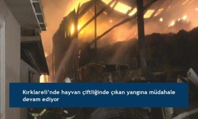 Kırklareli'nde hayvan çiftliğinde çıkan yangına müdahale devam ediyor